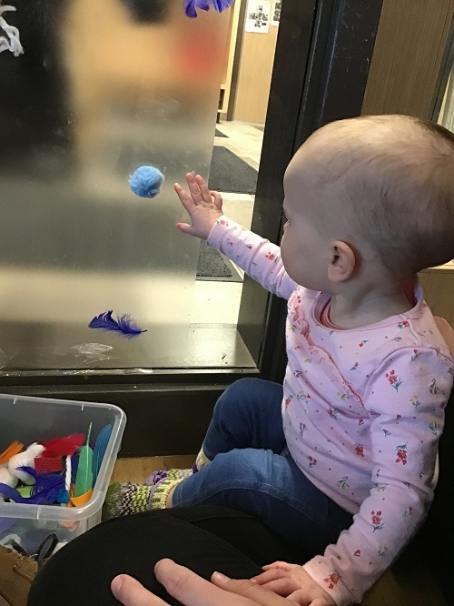 Child touching sticky paper on window