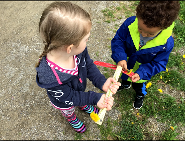 Two children use a ruler to measure a flower