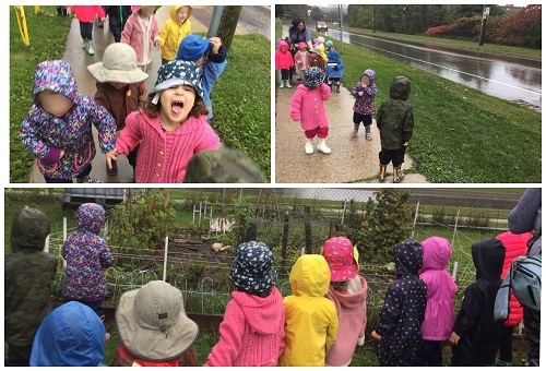 A collage of photos with preschool children walking through a park with preschool staff.