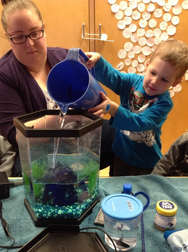 Child and educator pour water into a fish tank