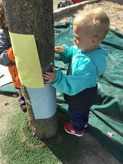 Child rubbing a crayon on a tree to make a print