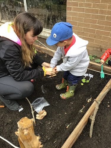 toddler children and educator planing seedlings in a garden