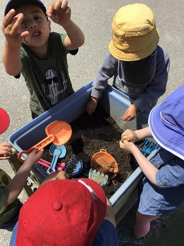 children finding worms